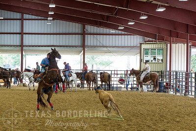 May 15, 2016-T2 Arena 'Team Roping'-TBP_0201-