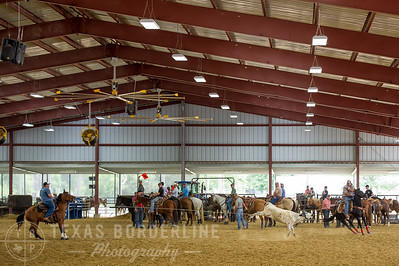 May 15, 2016-T2 Arena 'Team Roping'-TBP_0835-
