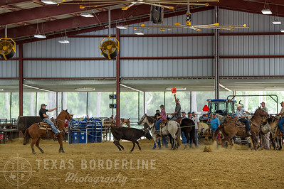 May 15, 2016-T2 Arena 'Team Roping'-TBP_0847-