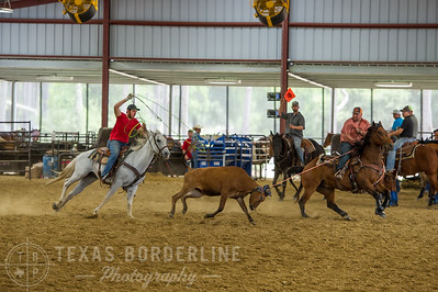 May 15, 2016-T2 Arena 'Team Roping'-TBP_0810-