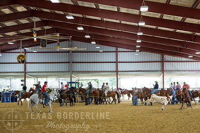 May 15, 2016-T2 Arena 'Team Roping'-TBP_0310-