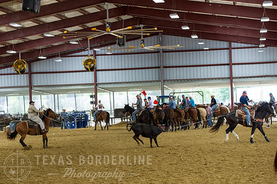 May 15, 2016-T2 Arena 'Team Roping'-TBP_0296-