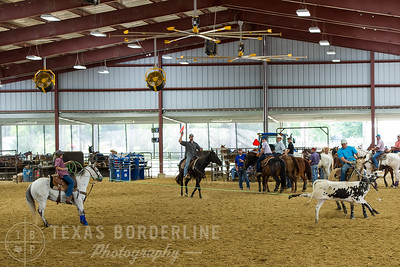 May 15, 2016-T2 Arena 'Team Roping'-TBP_0367-
