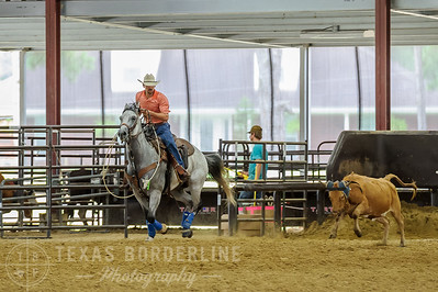 July 10, 2016-T2 Arena 'Team Roping'-TBP_8816-