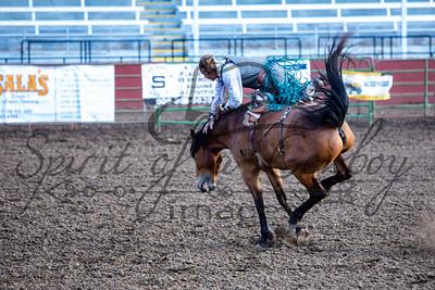 Bareback and Bronc Rodeo
