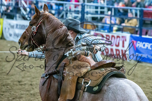 Tie-down, Steer Wrestling, Team Roping