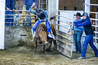 Rough Stock Rodeo