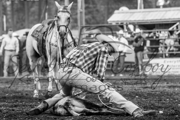 Newport WA Pro-West Rodeo