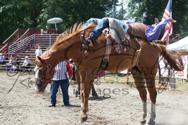 Bareback and Saddle Broncs