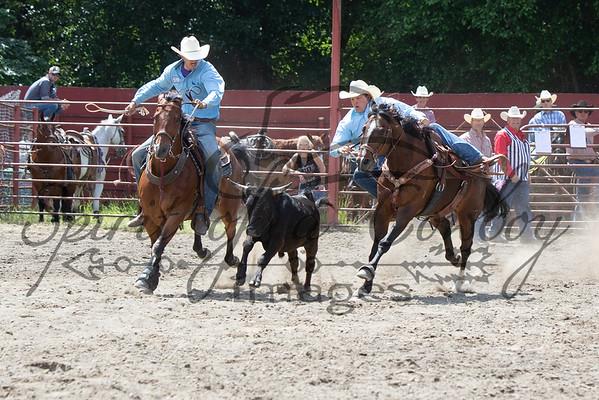 Steer Wrestling and Team Roping
