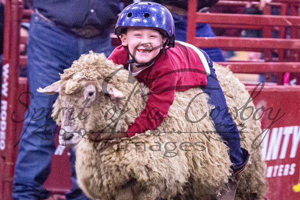 Mutton Bustin' and Bull Poker