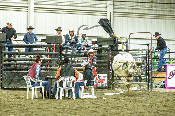 Mutton Bustin and Bull Poker