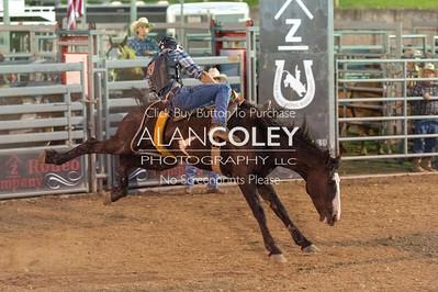 Saddle Bronc-8-20-18