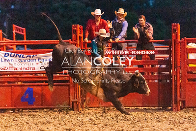 Bull Riding-Perf and Novice-20190719
