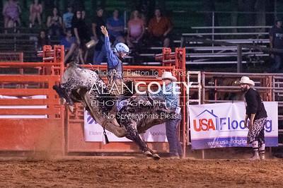 Bull Riding-7-14-18
