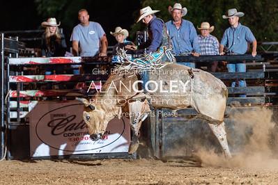 Bull Riding-20190727