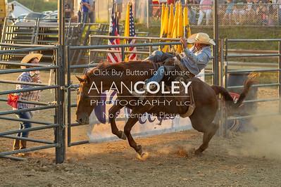 Bareback and Saddle Bronc-9-3-18