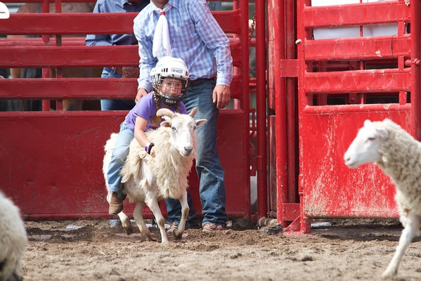 Mutton Busting at Montgomery County Rodeo