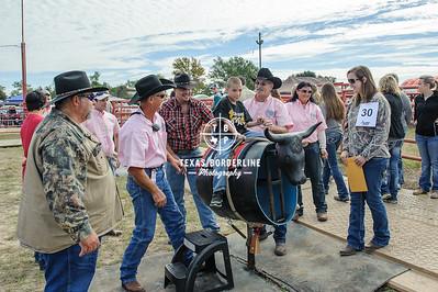 November 08, 2014-OCSP 'Special Angels  Rodeo'-3819