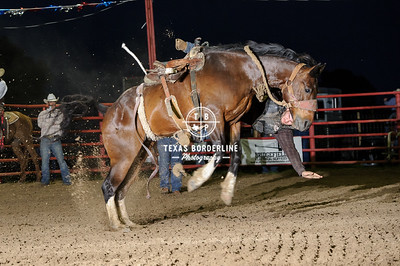 May 09, 2015-Orange Sheriff Posse Rodeo-3310