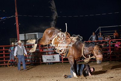 May 09, 2015-Orange Sheriff Posse Rodeo-3311