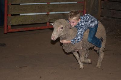 April 26, 2014-Orange Sheriff's Posse Rodeo-1410
