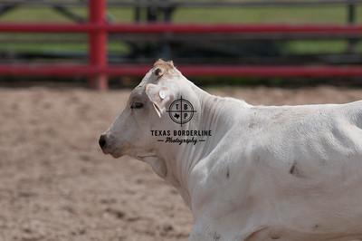 Orange County Sheriffs Possee Rodeo-September 16, 2012-001