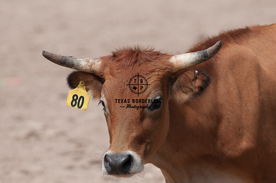 Orange County Sheriffs Possee Rodeo-September 16, 2012-002