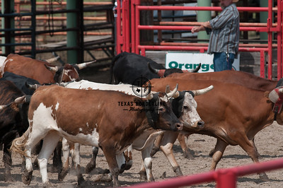Orange County Sheriffs Possee Rodeo-September 16, 2012-004