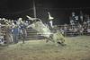 Rodeos : 10 galleries with 1526 photos