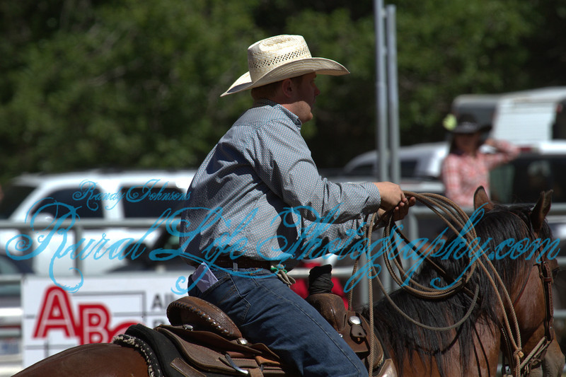 2013 Alder Creek  ( Cow Milking )