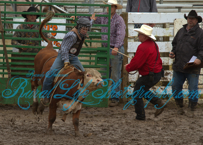 2013 Tillamook Sunday JR Bulls