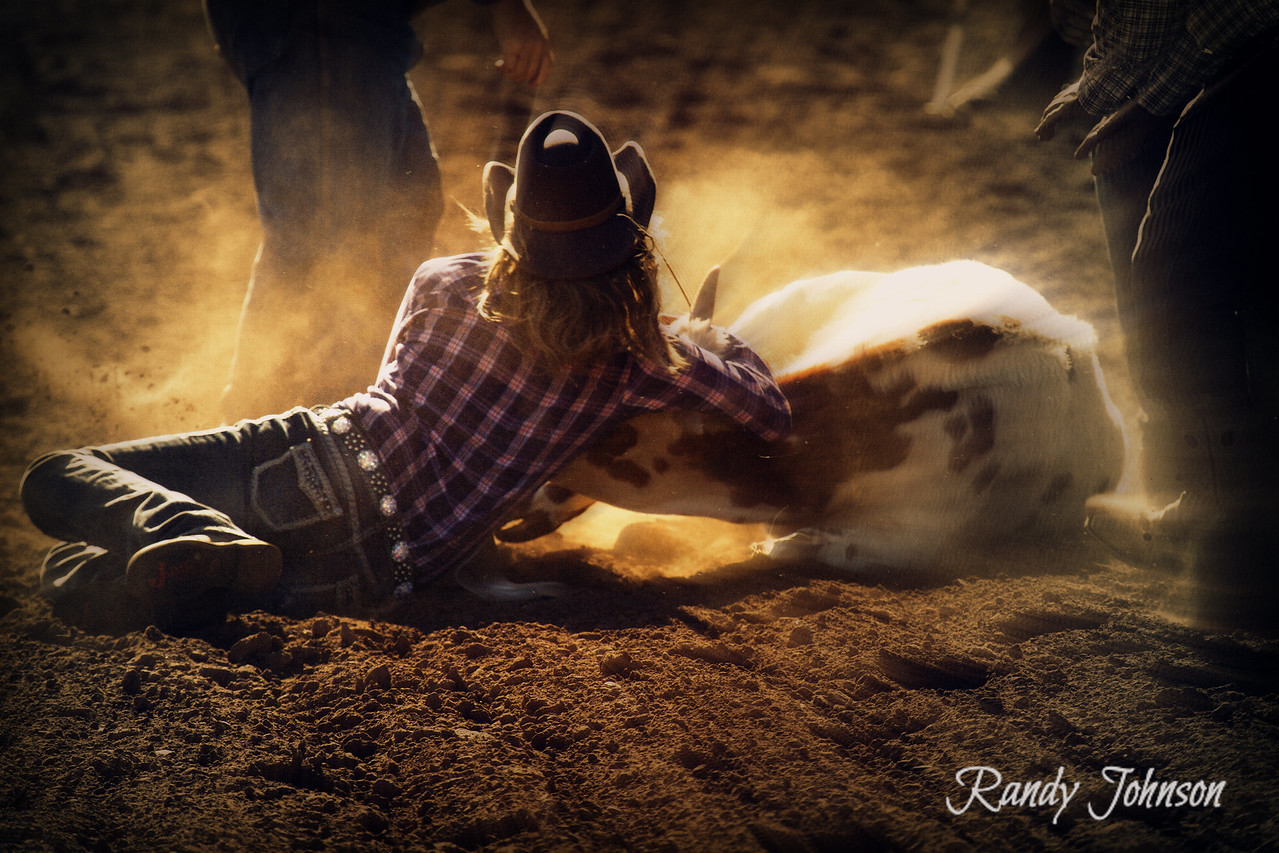 6833<br /> Cowgirl Dogger<br /> RBC 2013