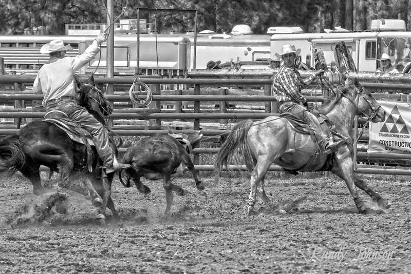 Available in 8x12<br /> Ketchum Kalf 2013 (Team Ropers Jess Kayser and Cody Tobin)