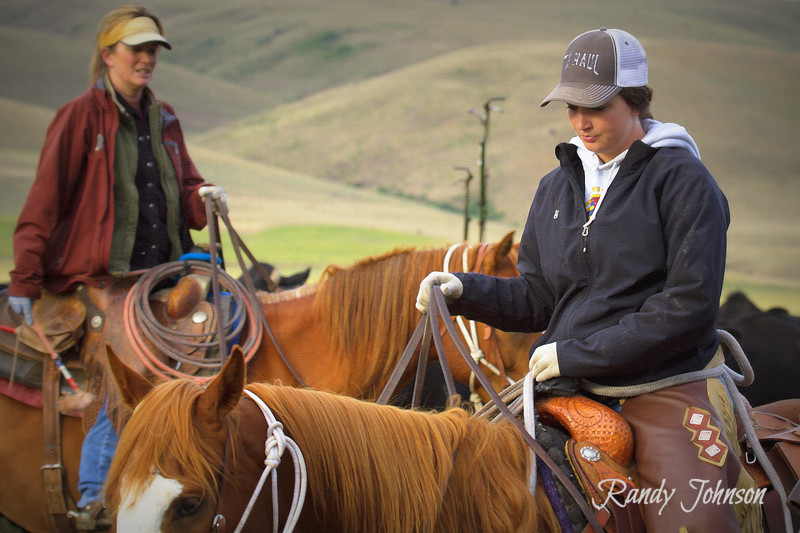 Lexi Cameron in foreground &  Kristin Cameron in Background,Cameron Movin Cows, Drive 2013