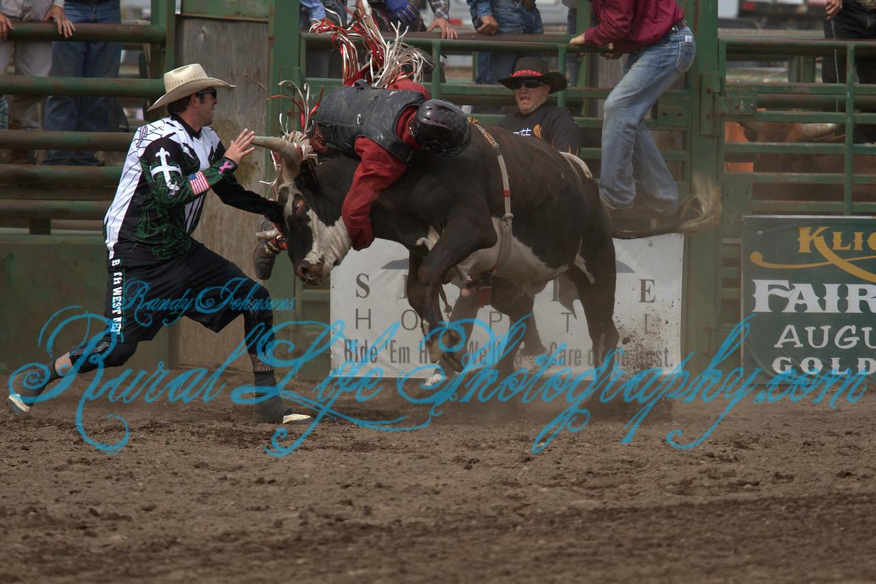 Ketcum Kalf Sunday 2013 Bulls