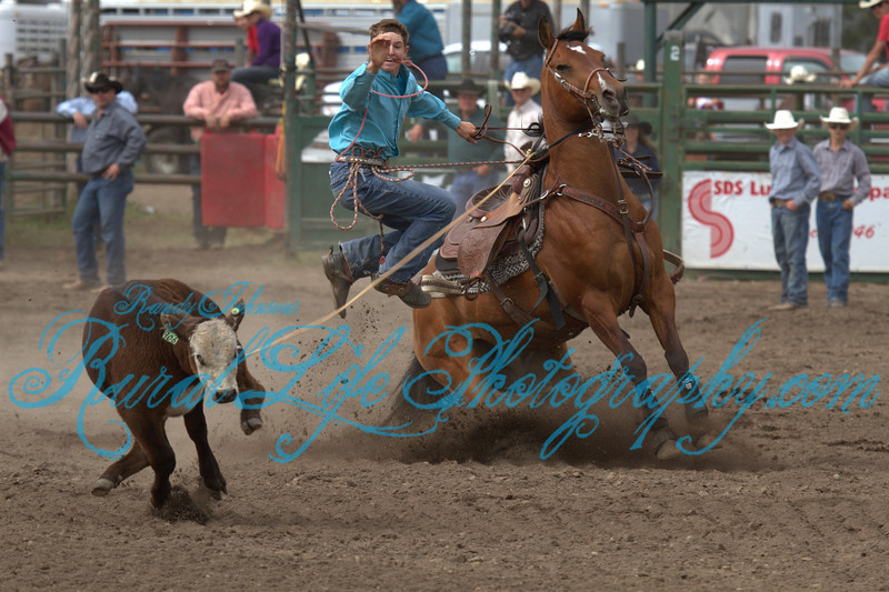 (9283)<br /> <br /> (High Flyer Cooper Mills)<br /> <br /> I have been watching 16 year old Cooper Mills Rope the past few years at Rodeos and Brandings, and I must say he gets better every time I see him.<br />  Cooper comes from Blood lines of the Mills of st John and Kaysers of Centerville Washington where Both sides of the family Ranch and Rodeo. He and his brother Lance spend summers in Klickitat County helping at the Neil Kayser Ranch ( I Know that was him I saw driving, pulling a stock trailer behind Neil's rig headed up Knight rd the other day)  No doubt he gets a lot of pointers from Aunt and Uncle Kelsey Kayser Endicott (Break Away Roper) and her husband Clint Endicott (Tie Down Roper), and all the other Kayser clan. I would not be one bit surprised to see Cooper in the National Finals. You can bet I will be their for the shoot.