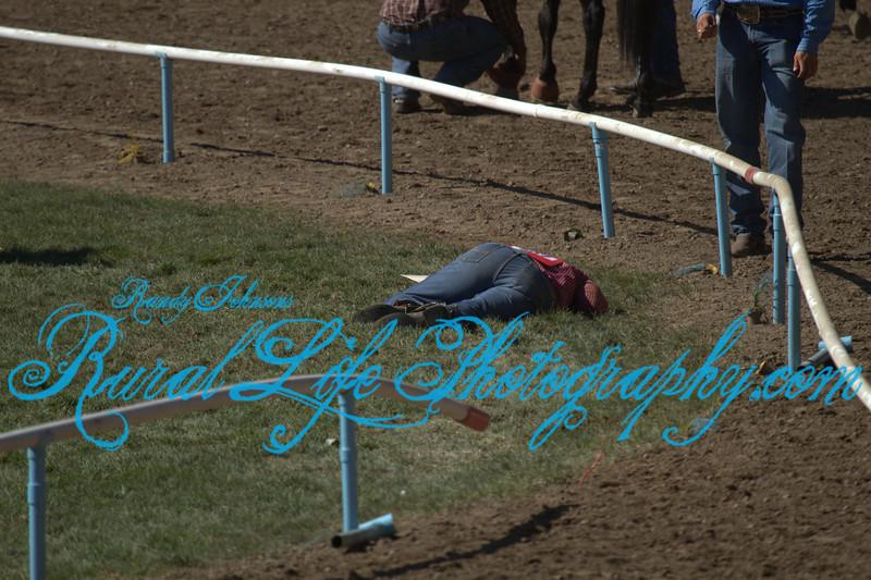 4952<br /> Injured Steer wrestler.
