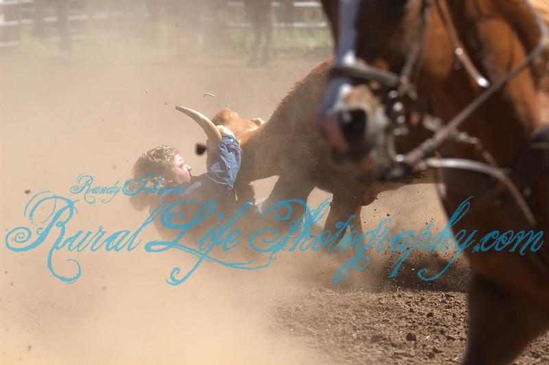Steer Wrestling
