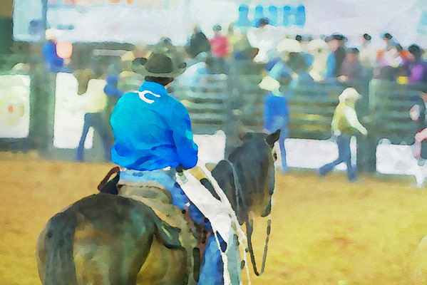 130th Silver Spurs Rodeo in Kissimmee,FL. Saturday Night Show