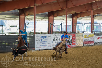 October 10, 2015-T2 Arena 'CASA' Team Roping-TBP_0359