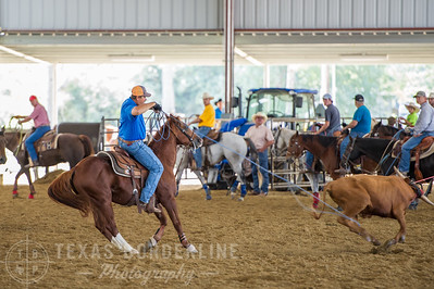 October 10, 2015-T2 Arena 'CASA' Team Roping-TBP_0350