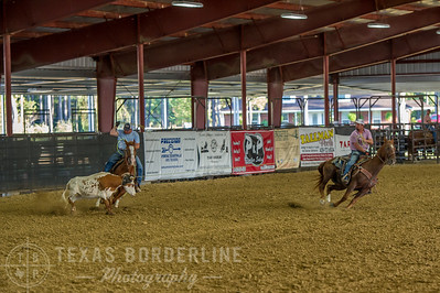 October 10, 2015-T2 Arena 'CASA' Team Roping-TBP_2500-