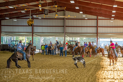 October 10, 2015-T2 Arena 'CASA' Team Roping-TBP_2516-