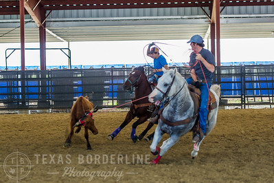 October 10, 2015-T2 Arena 'CASA' Team Roping-TBP_0020