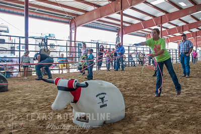 October 10, 2015-T2 Arena 'CASA' Team Roping-TBP_0234-