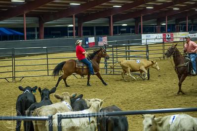 October 09, 2015-T2 Arena 'CASA' Ranch Sorting-TBP_9029