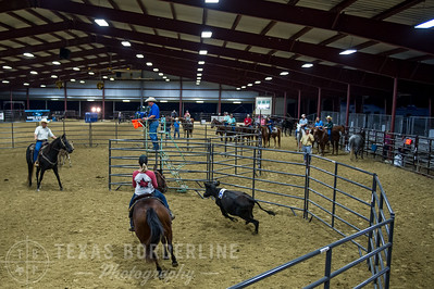 October 09, 2015-T2 Arena 'CASA' Ranch Sorting-TBP_9062