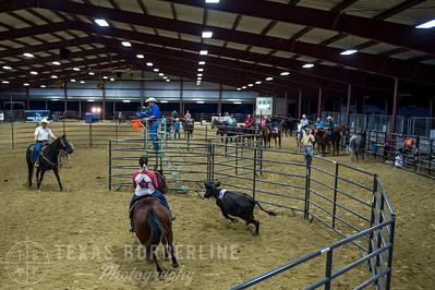 October 09, 2015-T2 Arena 'CASA' Ranch Sorting-TBP_9062