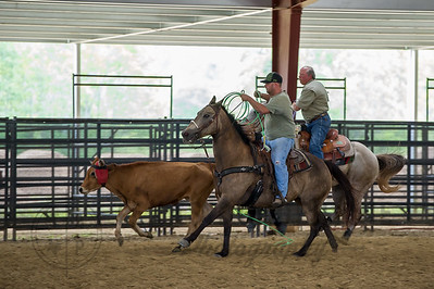 September 26, 2015-T2 Arena 'Team Roping'-LAT_5556